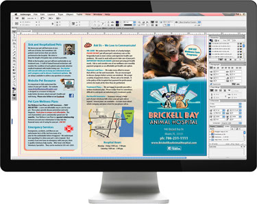 Veterinary Practice Brochure Design